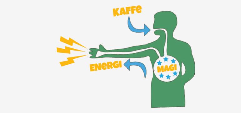 hvad gør koffein ved kroppen